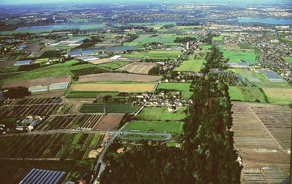 Zone Agricole Protégée de Ste Gemmes sur Loire
